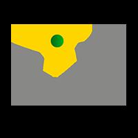 TimberMatic Karten